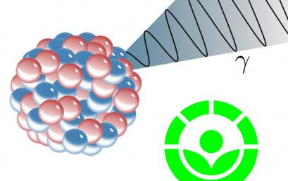 Irradiação por Raios Gama como alternativa ao uso de Fungicidas no tratamento de alimentos