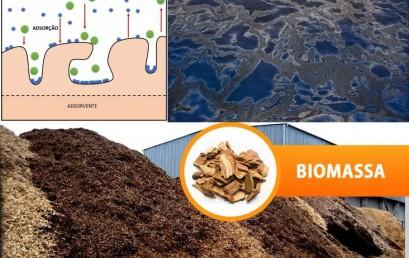 Avaliação de Biomassas como adsorventes para remoção de contaminantes, derivados do Petróleo, em efluentes aquosos