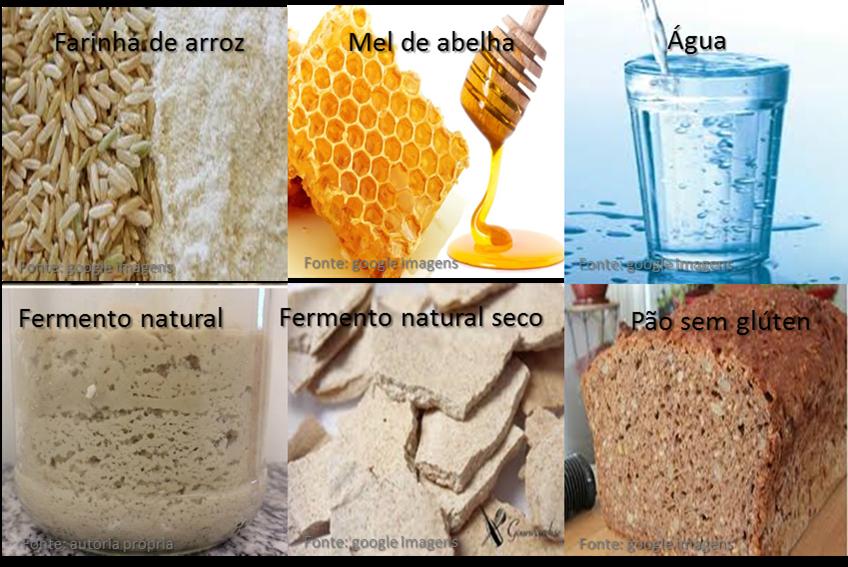 Desenvolvimento de Fermento Natural Orgânico livre de Glúten a base de mel como fonte Glicídica