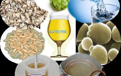 Elaboração de Cerveja Artesanal Orgânica Glúten Free