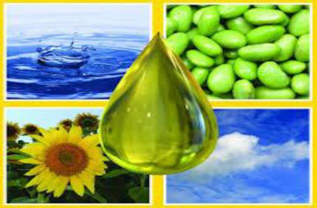 Aplicação do Fluido de Perfuração à base de Biodiesel na Indústria de Óleo e Gás